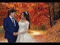 Download Neymet & Lamiye 1 Qiz evi 11 11 2018 HD Video