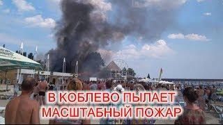 Download В Коблево пылает масштабный пожар. Один человек госпитализирован Video