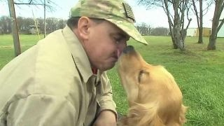 Download Veterans training service dogs and healing themselves Video
