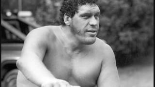 Download Ken Patera tells an incredible Andre the Giant drinking story Video