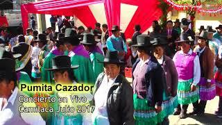 Download PUMITA CAZADOR ▷ LA CORNUDA EN CAMILACA - TACNA Video