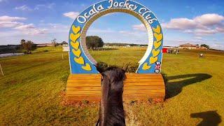 Download Helmet Cam: Simply Priceless (CIC3* | 2017 Ocala Jockey Club Three Day Event) Video