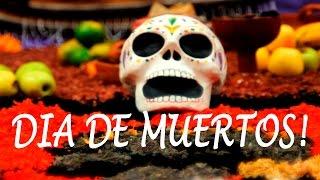 Download De dónde surgen las ofrendas de día de muertos en México? Video