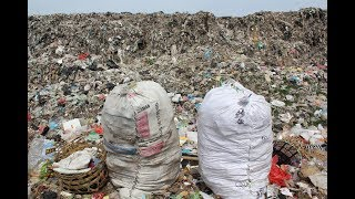 Download How can individuals combat plastic pollution? Video