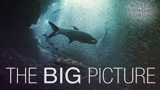 Download The Big Picture on Oceans Video