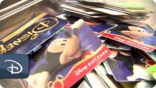 Download Every Role a Starring Role - Environmental Integration Representative | Disneyland Resort Video