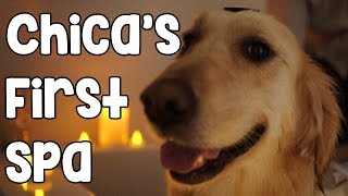 Download CHICA'S FIRST SPA Video