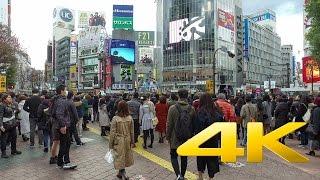 Download Walking around Shibuya - Tokyo - 渋谷を歩く- 4K Ultra HD Video