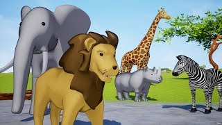 Download Wild animals name and sound Video
