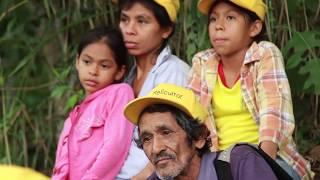 Download Desigualdad - Semana de la Agricultura y la Alimentación en América Latina y el Caribe Video