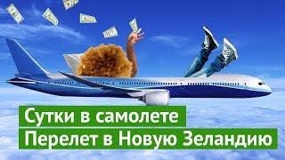 Download Сутки в самолёте: долететь до Новой Зеландии за кучу денег и не сойти с ума Video