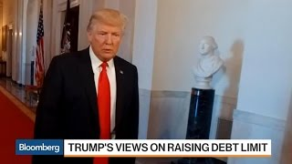 Download Mnuchin Raises the Alarm on U.S. Debt Ceiling Video