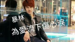 Download 《為爱流下傷心淚》演唱 : 暴林 Video