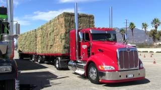 Download Hettinga Transportation Peterbilt 386 Arriving At Truckin' For Kids 2014 Video