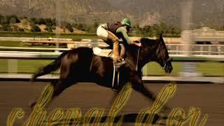 Download pronostic cheval d'or 18/01/2019 - Cagnes sur-Mer - R1Course2-Prix Charles Gastaud Video