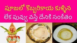 Download పూజలో కొబ్బరికాయ కుళ్ళిన లేక చెడిపోయిన దేనికి సంకేతం || Vastu Tips about Coconut || Money Video