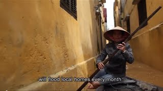 Download Flood Lines - Urban Adaption to Climate Change in Hoi An, Vietnam Video