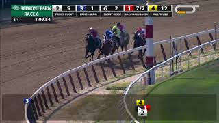 Download Prince Lucky - 2019 - The State Dinner Stakes Video
