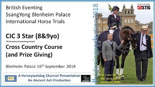 Download Blenheim Palace International Horse Trials: CIC 3 Star Cross Country Video