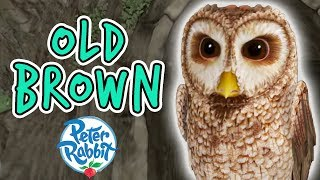 Download Peter Rabbit - Old Brown Tales Compilation | 20 minutes | Adventures with Peter Rabbit Video