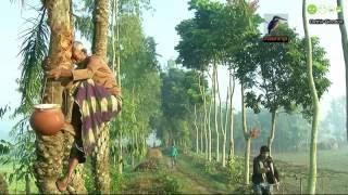 Download Beautiful Winter in Bangladesh Video