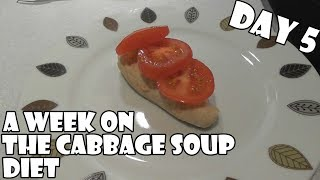 Download A Week On The Cabbage Soup Diet DAY 5 Video