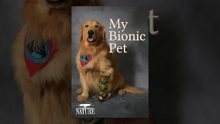 Download My Bionic Pet Video