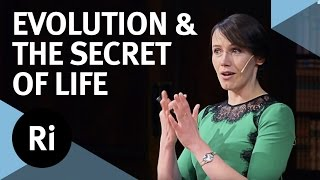 Download Copy number variation and the secret of life - with Aoife McLysaght Video