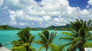 Download 4K UHD Nature Screensaver: Caribbean Palm Vista 1HR Static Nature Relaxation™video A7RII Antigua Video