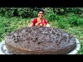 Grandma's Special Delicious Chocolate Cake Recipe || Christmas Chocolate Cake ||#grandmafoodnetwork