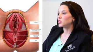 Download What is a vaginoplasty? Video
