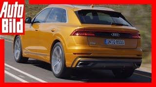 Download Audi Q8 (2018) Sitzprobe/Interview/Details/Erklärung Video