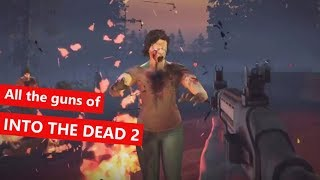 Download All the guns of Into The Dead 2 Video