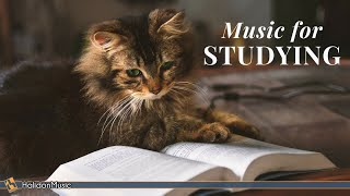 Download Classical Music for Studying & Brain Power | Mozart, Vivaldi, Tchaikovsky... Video