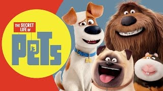 Download The Secret Life Of Pets REAL LIFE All Characters | Kiddopedia Video