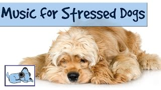 Download Music to Relax and Soothe your Stressed Dog - Music Therapy for Dogs Video
