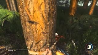 Download Вот Такие Моменты в The Forest Video