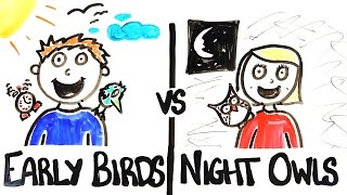 Download Early Birds vs Night Owls Video