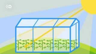 Download What is the greenhouse effect? | Global Ideas Video