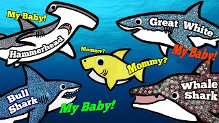 Download Sea Animals for Kids, Learn Names and Sounds | Great White Shark, Whale Shark, Hammerhead Shark Video