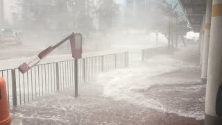 Download Typhoon Hato Batters Hong Kong 23rd August 2017 Video