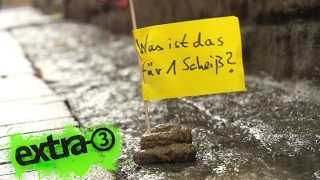 Download Realer Irrsinn: Hundekot-Fähnchen in Goslar | extra 3 | NDR Video