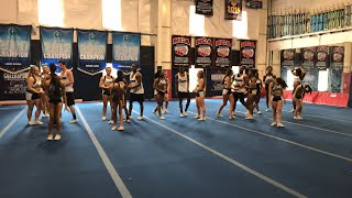 Download Worlds Boot Camp Live! Cougars Video