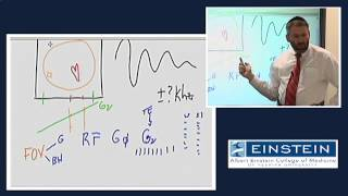 Download Introducing MRI: Field of View, Receiver Bandwidth and Aliasing (27 of 56) Video