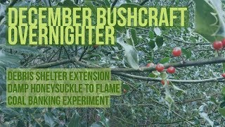 Download December Bushcraft Overnighter- debris shelter extension, damp honeysuckle to flame, coal banking Video