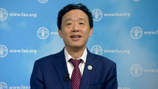 Download World Food Day 2019: Video message by FAO Director-General Video