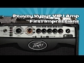 Download Peavey Vypyr VIP 1 Amp | First Impressions Video