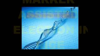 Download Application of Genomics In Agricultural Research Video