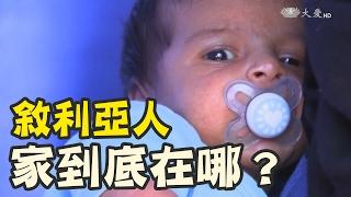 Download 台灣愛不缺席 Video
