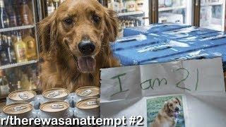 Download r/therewasanattempt Best Posts #2 Video